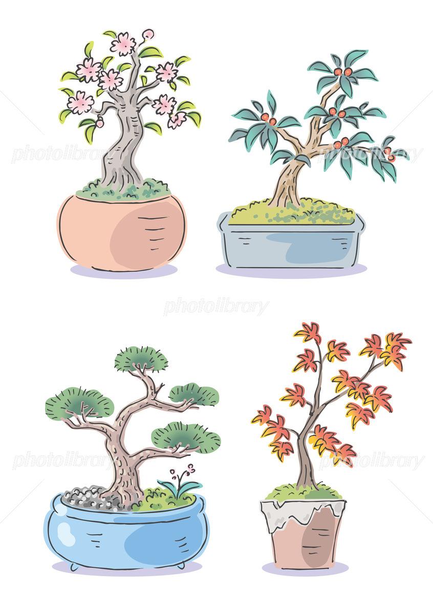 盆栽泥棒。